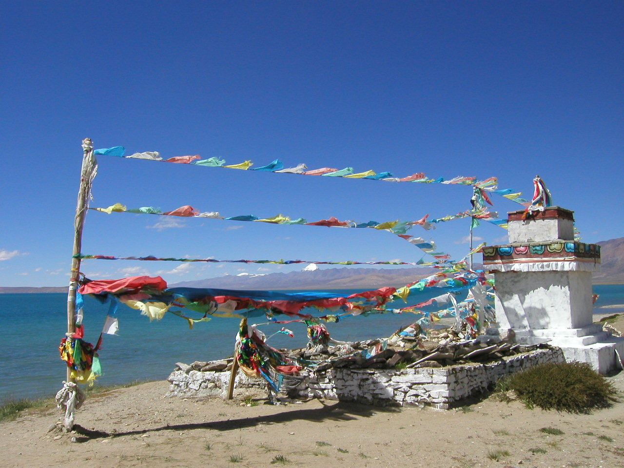 Programme MBSR en ligne zoom drapeaux de prière