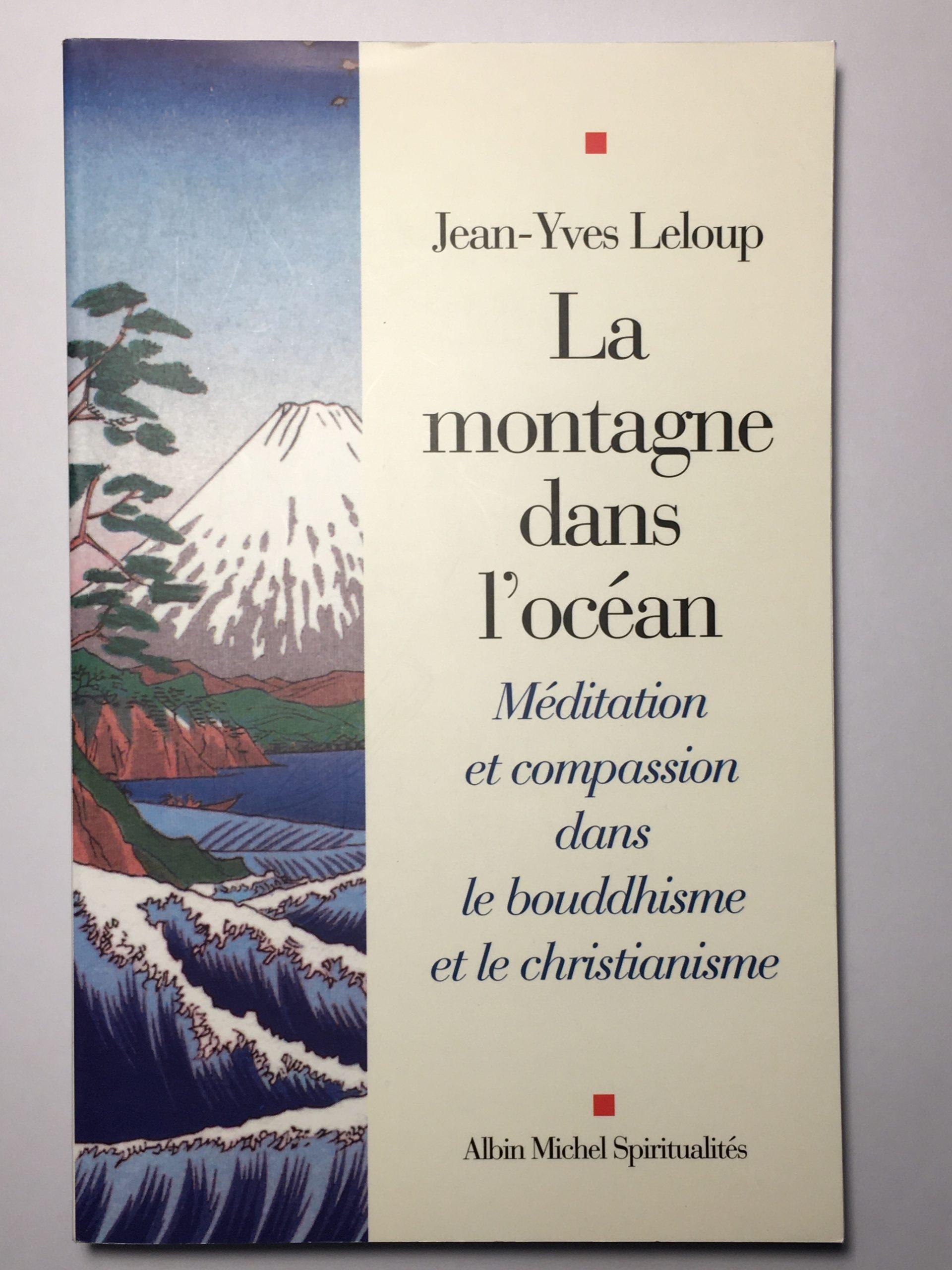 Méditation Mindfulness Couverture Livre La montagne dans l'océan
